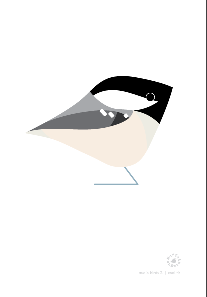 Coal Tit. Studio Birds | series 2.