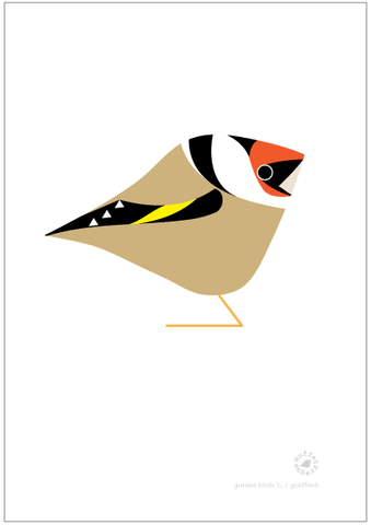 Goldfinch. Garden Birds | series 1.