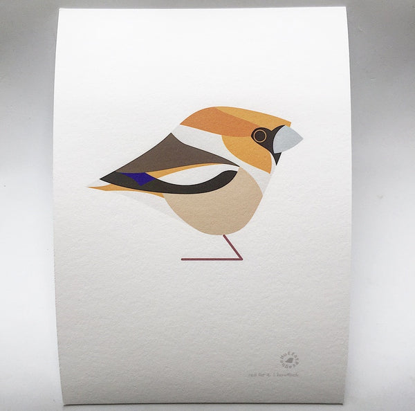 Hawfinch | MuffatPrague Editions Red List - series 4.