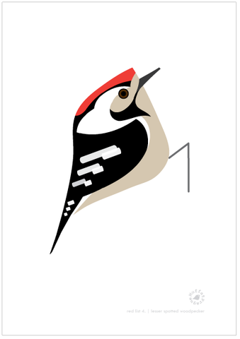 Lesser Spotted Woodpecker | MuffatPrague Editions Red List - series 4.