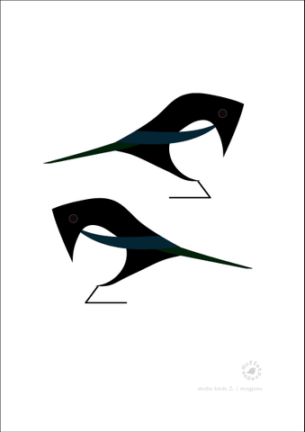 Magpies. Studio Birds | series 2.