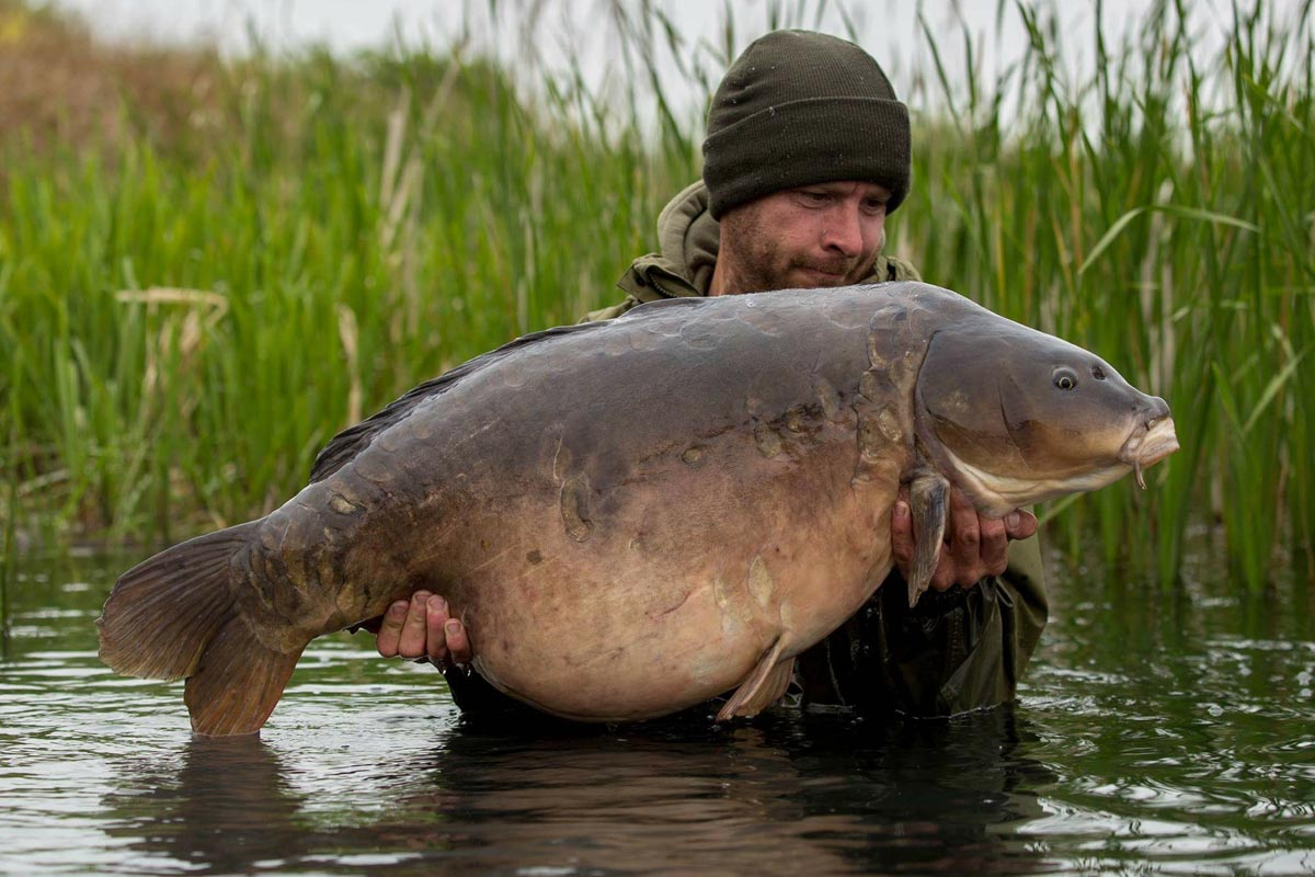 U.K upper 40 mirror - From under the radar - Lee Carpenter