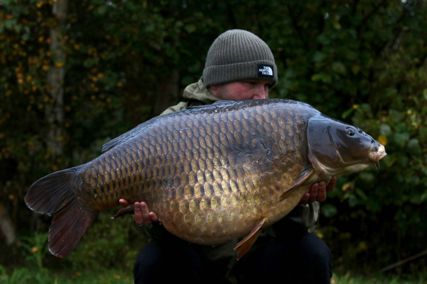 U.K 48.2 Common for Liam Gingell