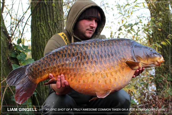 Liam Gingell with an epic common caught on a Size 4 Duropoint Curve shank