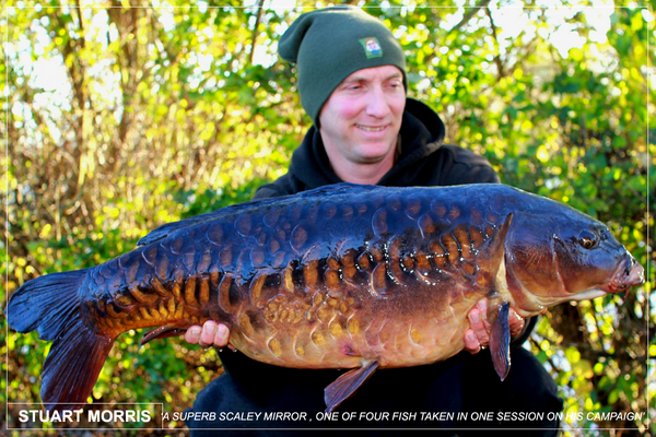 An incredible carp - part of a four fish catch for Stuart Morris