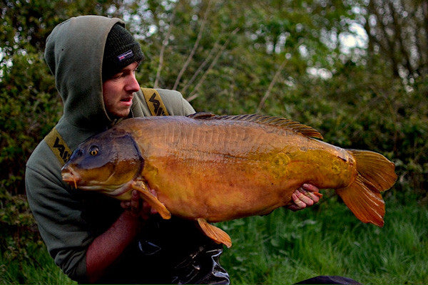 A Dinton pastures white swan original of 33lb's for Dan Handley