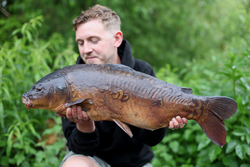 James Barrett - linch hill willow 18.08 mirror - Angling Iron DUROPOINT
