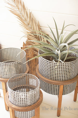 Modern Metal Planters on wooden stands