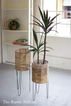 Modern Planters on Metal stands  Set of two