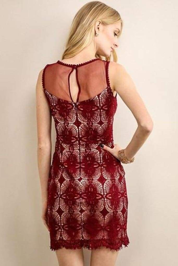 Carli Burgundy Belle Lace Dress - Shop Pretty Spring Dresses