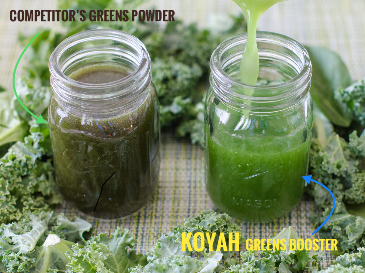 KOYAH Tropical Leafy Greens Booster powder vs competitors greens powder