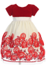 Red Velvet & Ivory Tulle Girls Holiday Dress w. Floral Soutache Skirt  C989