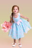 Blue & Pink Contrasting Color Butterfly Organza Burnout Girls Dress  KD382