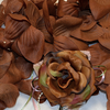 BROWN Flower Petal Set