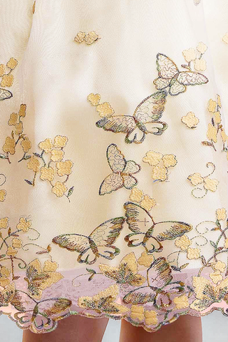 Yellow Organza Dress with Embroidered Flowers & Metallic Butterflies  Girls Size 2T - 12