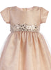 Pink Champagne Shimmering Mesh Holiday Dress w. Sequin Trim  C508