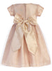 Pink Champagne Shimmering Mesh Dress w. Sequin Trim  C508
