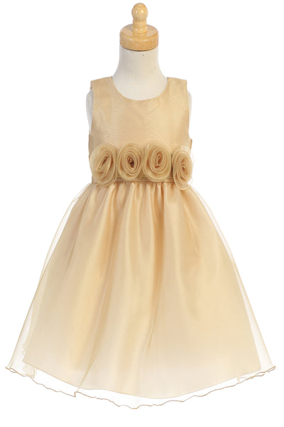 Gold Crystal Organza Overlay Girls Holiday Dress w Floral Front Waist C517