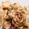 Champagne Flower Petal Set