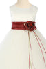 Burgundy Flower Girls Satin & Tulle Petal Dress w. Organza Sash KD160-SASH