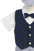 Navy Blue Vest & Seersucker Shorts Baby & Toddler Boys Spring Outfit (G821)