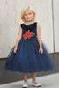 Girls Navy Blue Floral Velvet Holiday Dress with Three-Layer Tulle Skirt 2T-12 KD396