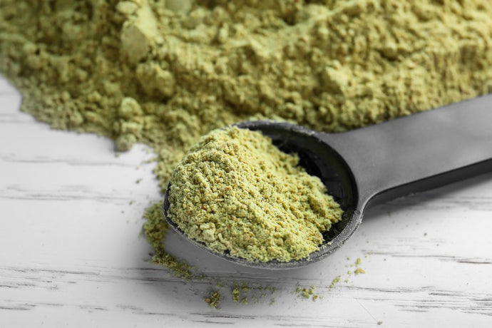 Hemp Protein Powder: The Ultimate Guide! | 2020