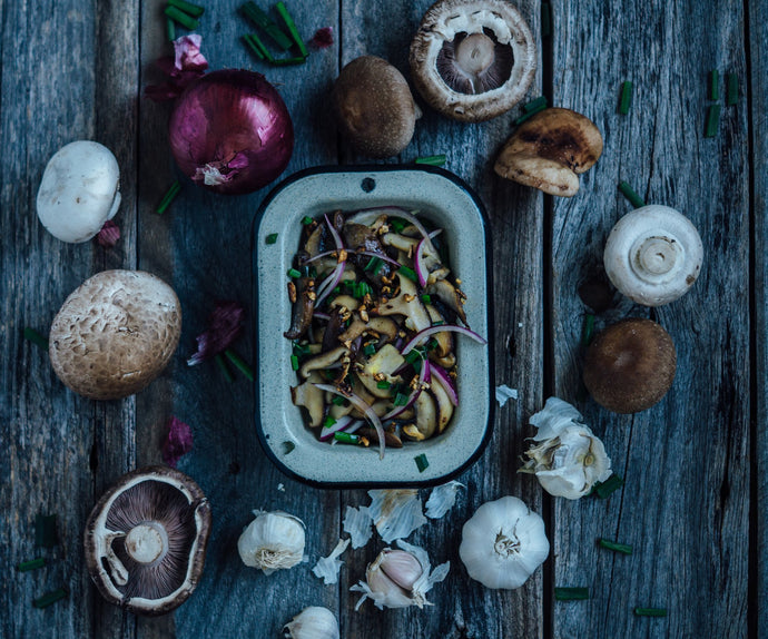 How To Grow Gourmet And Medicinal Mushrooms | 2020