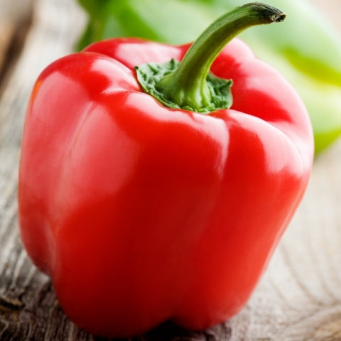 Capsicum Red Giant Seeds