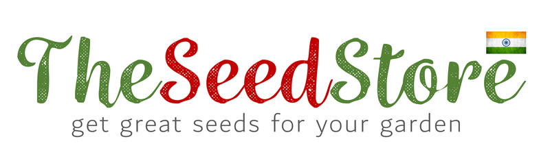 The Seed Store (India)