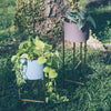 SHENG Plant Low Stand - Brass with Planter - SCENE SHANG