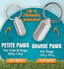 Natural flea control Pawtect