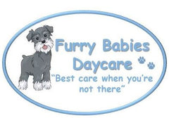 Eezapet at Furry Babies Daycare