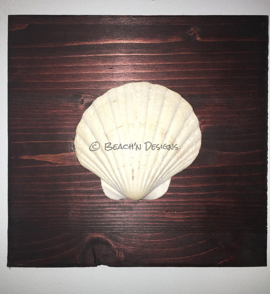 Seashell and starfish wall decor (set of 2) - Beach'n Designs - 7