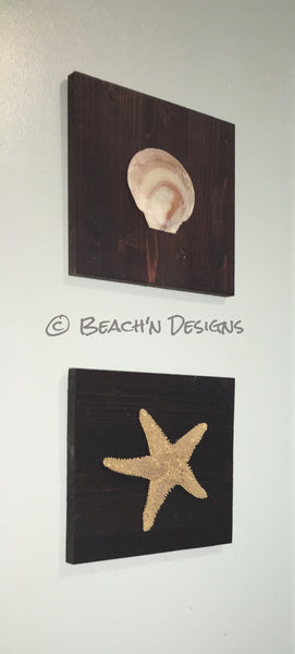 Seashell and starfish wall decor (set of 2) - Beach'n Designs - 8
