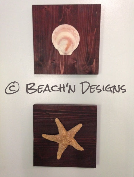 Seashell and starfish wall decor (set of 2) - Beach'n Designs - 1