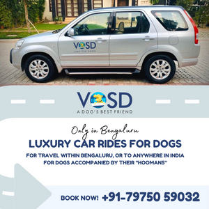 Limo for Dogs (Pet Taxi Services) - Luxury ride within and from Bangalore