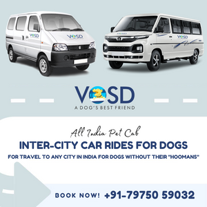 Eeco/ Winger Intercity Cab for Dogs (ex Bangalore & Pune)