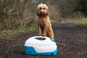 Megan Williams & The Cotswold Spaniels Review of Muddi 15 Portable Low Pressure Dog Washer