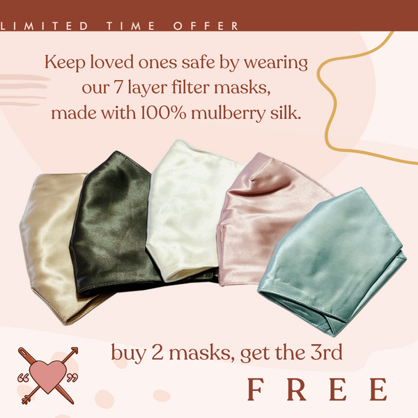 Silk Masks-  PM2.5 Filter Included