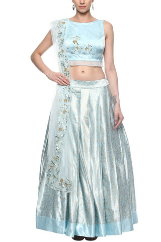 Blue Skirt with Cropped Top - devnaagri