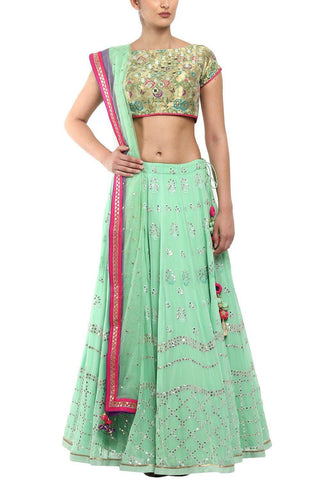 Mint Green Lehenga with Mukaish Net - devnaagri