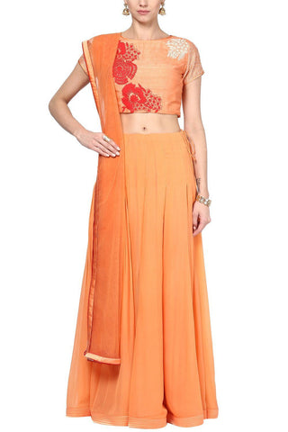 Orange Embroidered Crop Top and Skirt Set - devnaagri