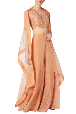 Peach Raw Silk and Kota Tissue Sharara Set