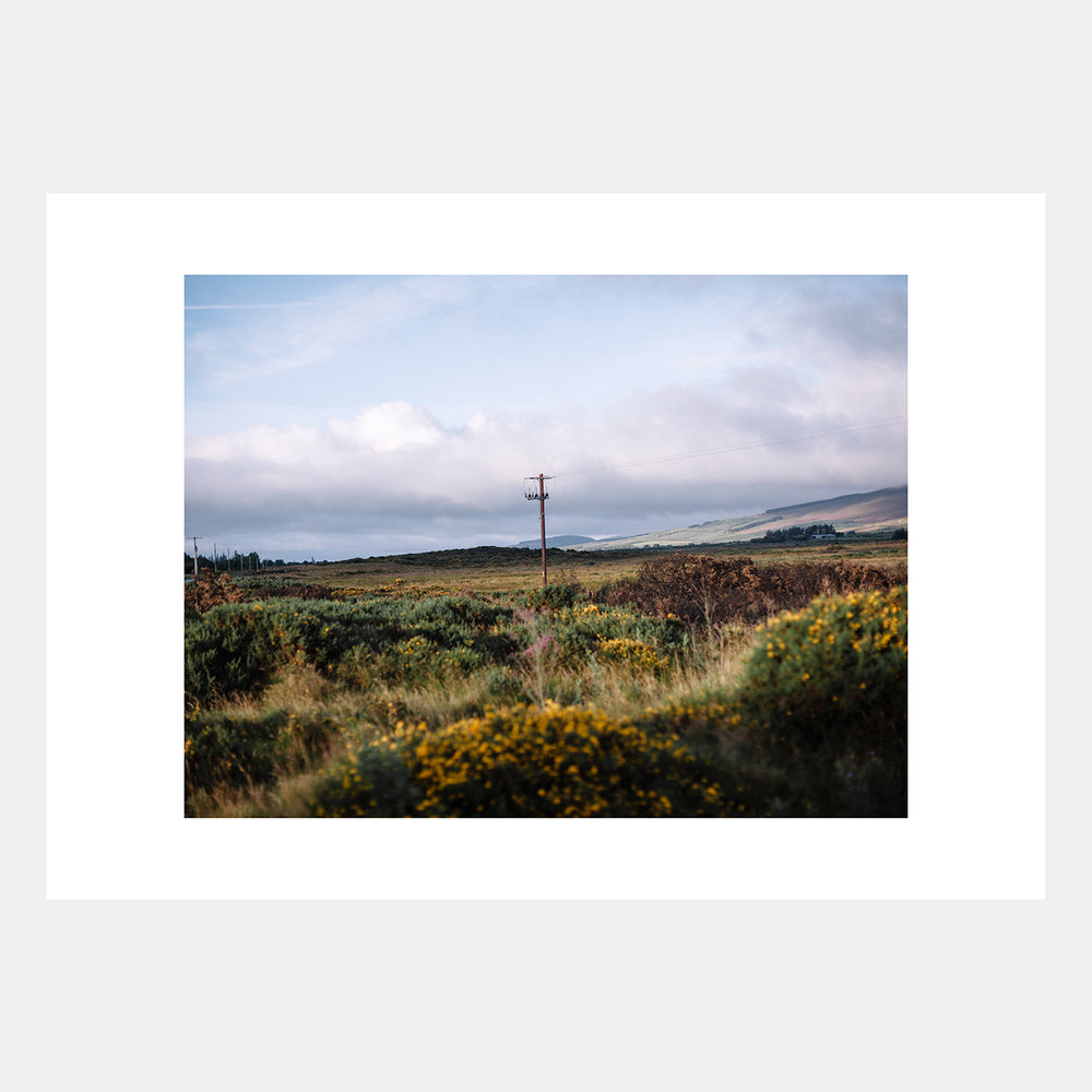Rich Gilligan: Wicklow I