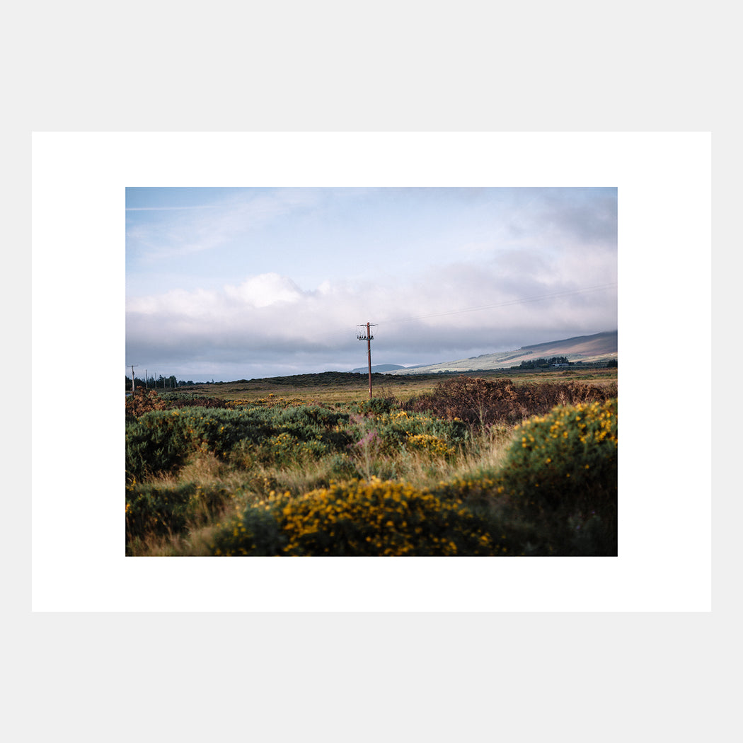 'Wicklow I' by Rich Gilligan
