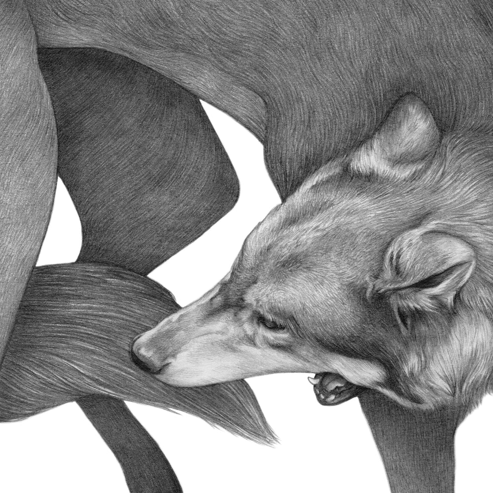 Load image into Gallery viewer, Denise Nestor: The Wolf - Hen's Teeth Store