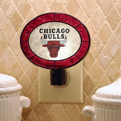 NBA Chicago Bulls Basketball Art Glass Night Light Oval Lite Kids Infant Decor