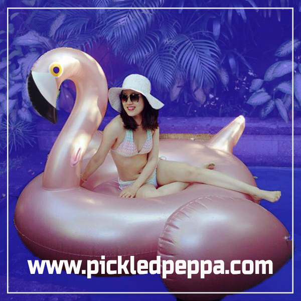 The Incredible Inflatable Flamingo-Trends-Pickled Peppa
