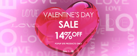 Perfect Valentine's Day Gift for Beauty Lovers